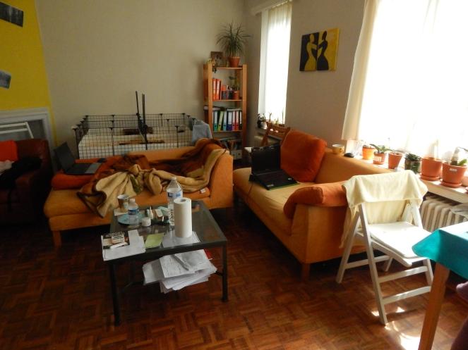 jurnal_belgia_living_room